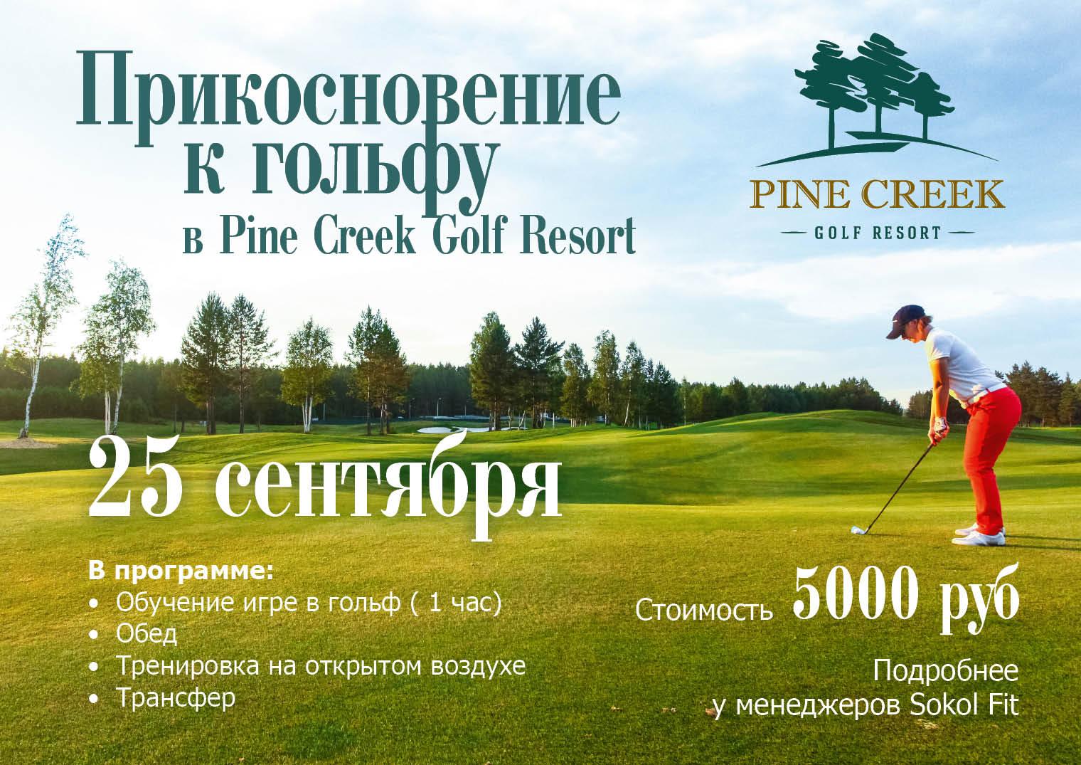 Игра в гольф!